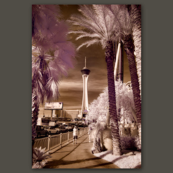 The Stratosphere, Las Vegas, Nevada