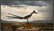 Roadrunner, Las Cruces, New Mexico